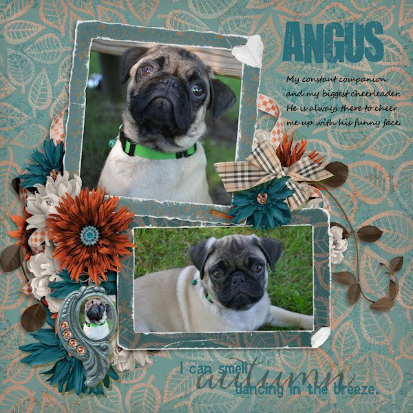 This is my best buddy Angus.  He hears all of my secrets and listens patiently when I blow off steam.  I don't know what I'd do without him!  I used Breath of Autumn Collection by Jilbert's Bits of Bytes, found here: https://www.digitalscrapbookingstudio.com/digital-art/bundled-deals/breath-of-autumn-collection/