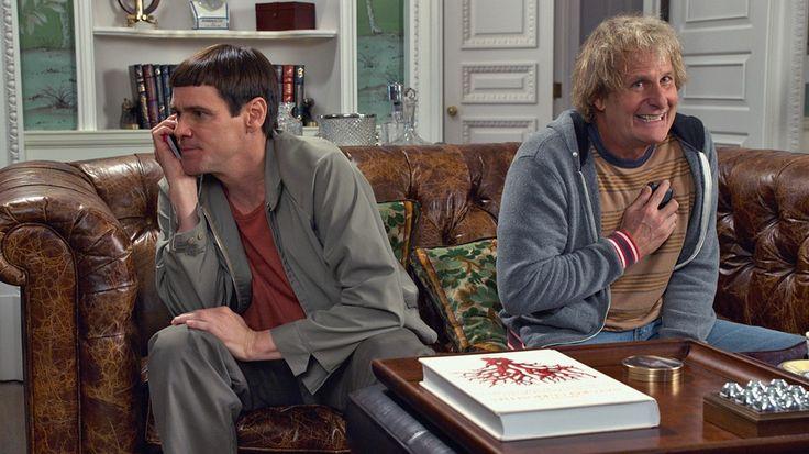 """Jim Carrey e Jeff Daniels retomam os seus lendários papéis de Lloyd Christmas e Harry Dunne em """"Doidos à Solta, de Novo"""". Passaram-se exatamente vinte anos e, entretanto, tudo mudou... menos a sua idiotice. Quando Harry precisa de um rim novo e descobre que tem uma filha, tem de acordar Lloyd do estado comatoso em que ficou desde que Mary o rejeitou, de forma a se meterem à estrada para lhe pedirem ajuda."""