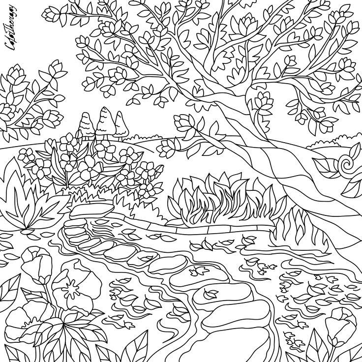 beste afbeeldingen van  adult coloring pages