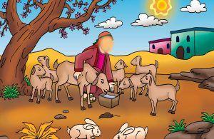 Setelah kambingnya tertangkap, ternyata Nabi Musa tidak marah.