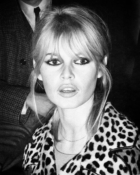 Bardot bangs