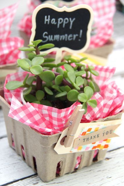 Succulent Berry Basket Gift Idea // SmashedPeasandCarrots.com