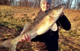 #Zander from river #Elbe near #Hamburg #Fishing #Angeln Winter 2012