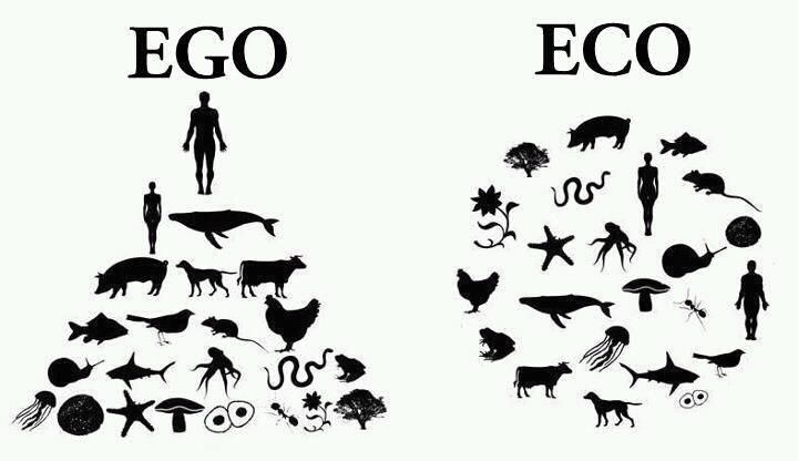 Ego V Eco - Could not be shown better. Go Eco!