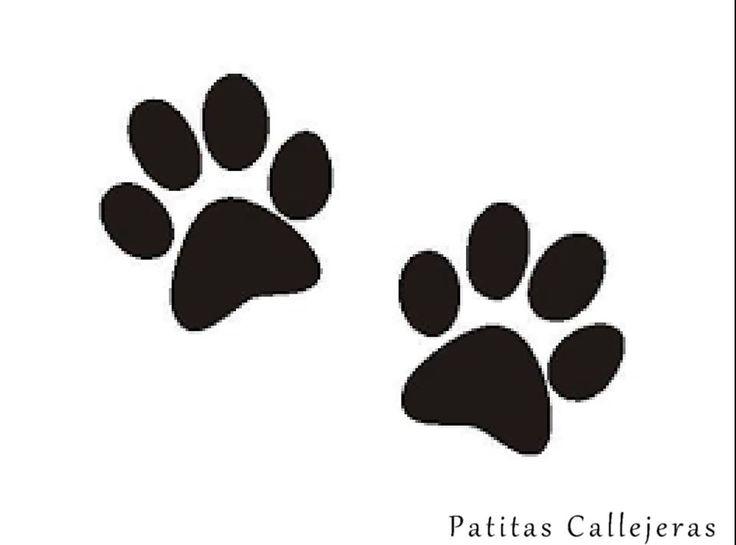 Las 25+ Mejores Ideas Sobre Tatuajes Patitas De Perro En