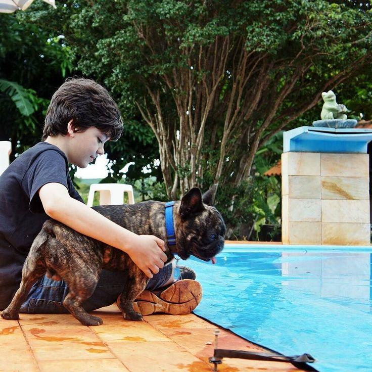 """Com alguma frequência nos pedem que o Bento visite espaços para que atue como """"cão terapeuta"""" de idosos e de pessoas (inclusive crianças) que apresentam algum grau de limitação física e/ou cognitiva. . Nós gostaríamos de explicar que um """"cão terapeuta"""" passa por todo um ENORME treinamento de sociabilização autocontrole e #principalmente  pelo #indispensável treino de inibição de mordidas. . Embora o Bento seja um catioro muito de buenas e 0% reativo (até hoje) nós nunca o submetemos ao…"""