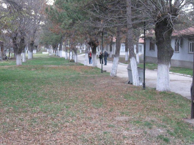 Oyun Bahçesi ve Durak yanındai yol.