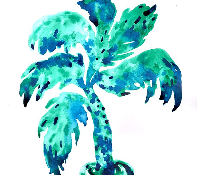 Palm #1