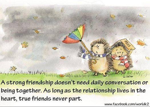 47 Best Best Friends Quotes Images On Pinterest