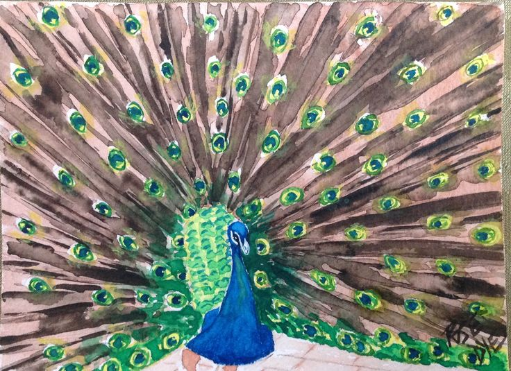 """Peacock  - """"The Eyes Have It"""" Watercolour"""