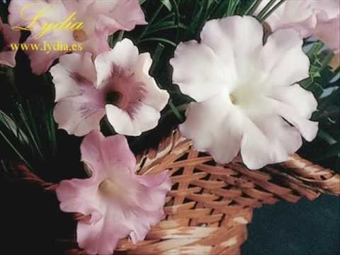 Cold Porcelain Petunia Tut