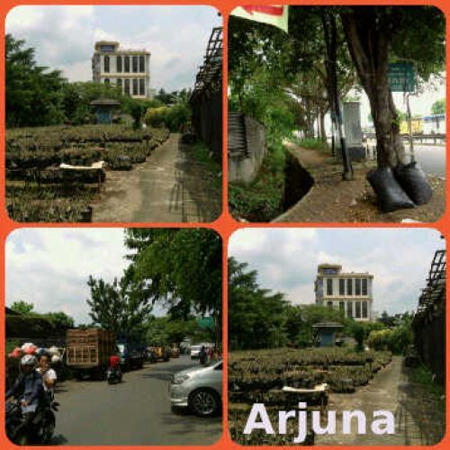 TANAH +/- 1Ha di Arjuna Utara, Duri Kepa Jakarta Barat Arjuna Utara, Duri Kepa, Duri Kepa Grogol Petamburan » Jakarta Barat » DKI Jakarta