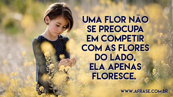 Uma flor não se preocupa em competir com as flores do lado, ela apenas floresce.