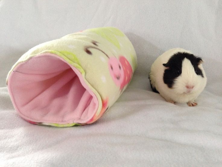 Cozy tunnel for small animals guinea pig,rabbit, ferret, pet hideout, pigaloo, pet sleeping bag. cage accessories, small animal toy, hideout by CreatedbyLauraB on Etsy