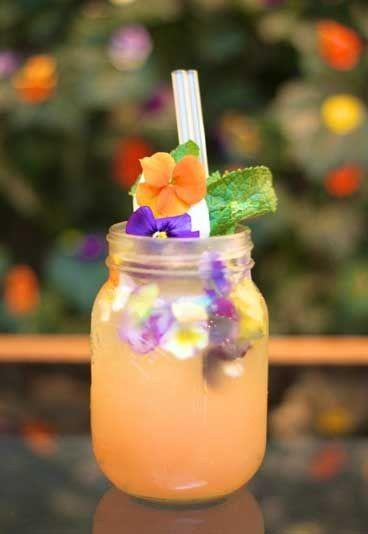 The Dandy - Wodka-Cocktails - Super lecker!