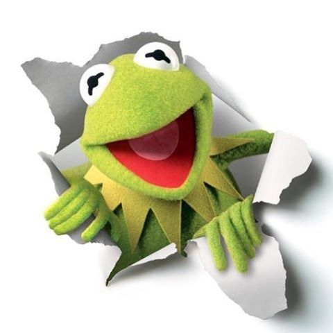 """""""Mi piace"""": 8,497, commenti: 61 - The Muppets (@themuppets) su Instagram: """"Hi-ho! Kermit the Frog here!"""""""