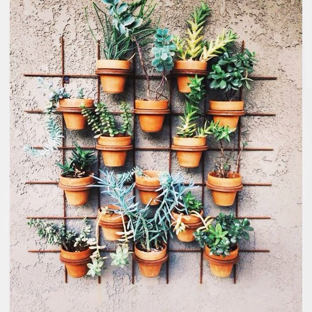 Herbed potted wall