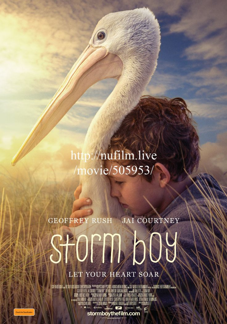 Regarder Storm Boy 2019 Film Streaming Vf Aptk Movies For Boys Hd Movies Free Movies Online