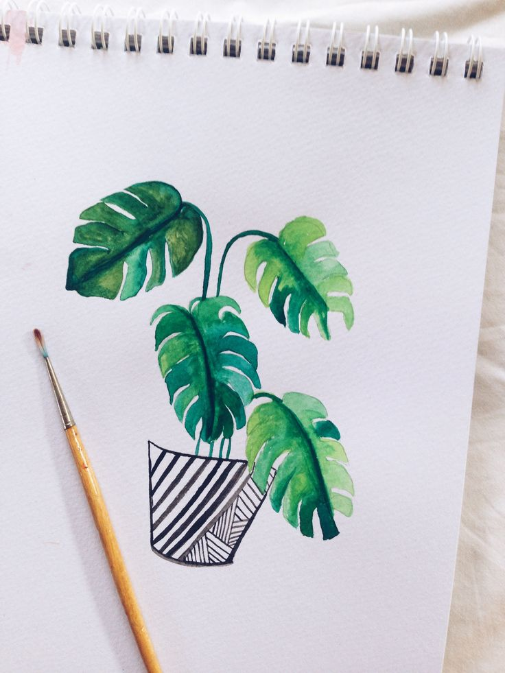 How to paint watercolor monstera leaves - a great tutorial to help you paint these cute tropical leaves
