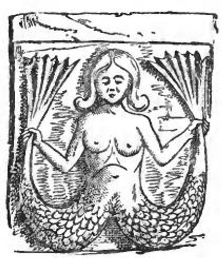 Melusina, the river goddess, bloodline of Jacquetta and Elizabeth Woodville whom which their magical powers came from