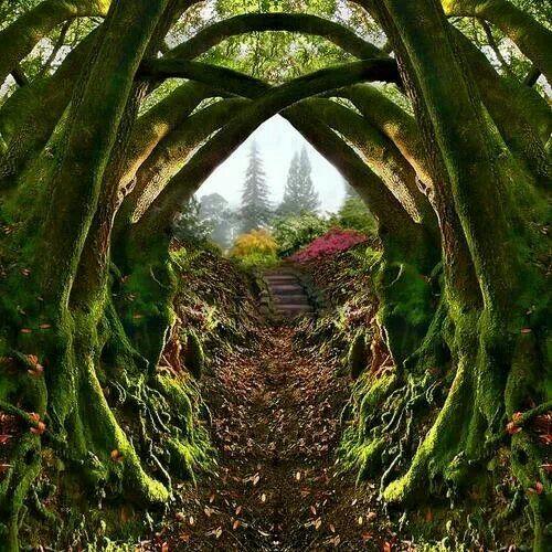 Entrance to the Secret Garden, Portland, Oregon , by architect41
