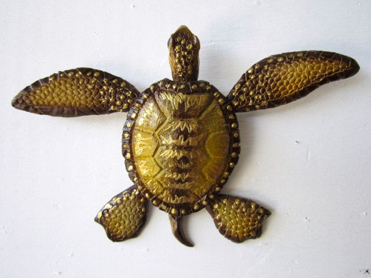 Turtle Wall Decor 730 best turtles and tortoises images on pinterest | tortoises