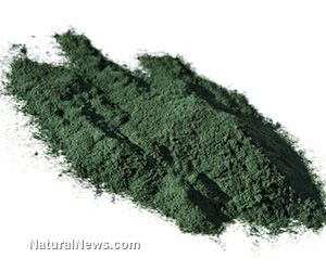 Oral consumption of spirulina extract enhances antitumor natural killer cells
