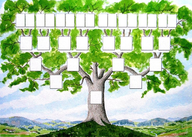 1000 ideas about arbre g n alogique gratuit on pinterest. Black Bedroom Furniture Sets. Home Design Ideas