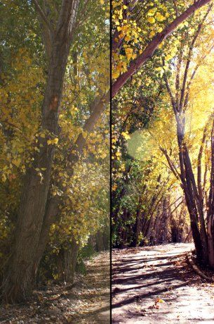 Enhancing the colors of your photos