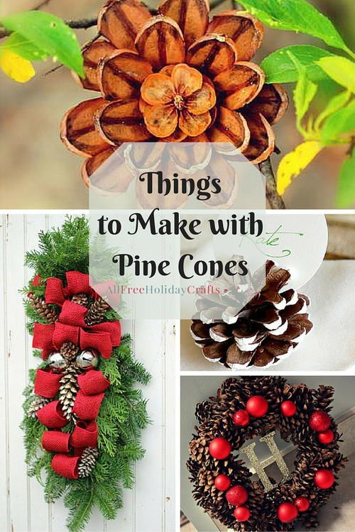 1620 best nature crafts images on pinterest pine cones for Holiday craft ideas with pine cones