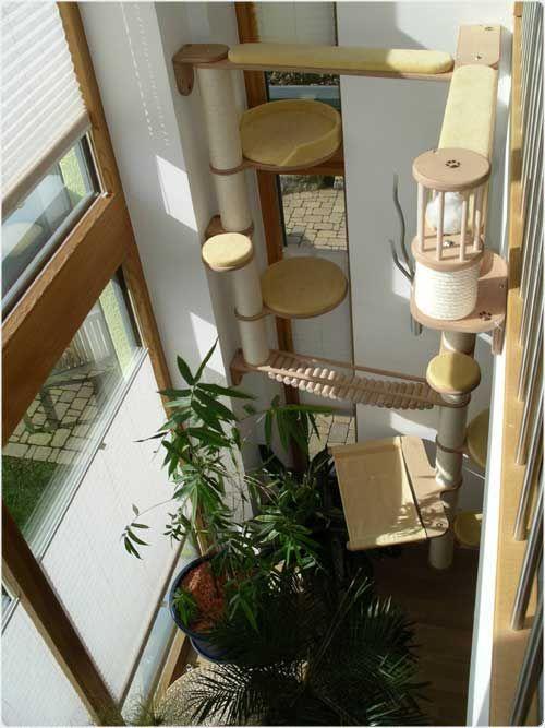 die 25 besten catwalk kratzbaum ideen auf pinterest. Black Bedroom Furniture Sets. Home Design Ideas