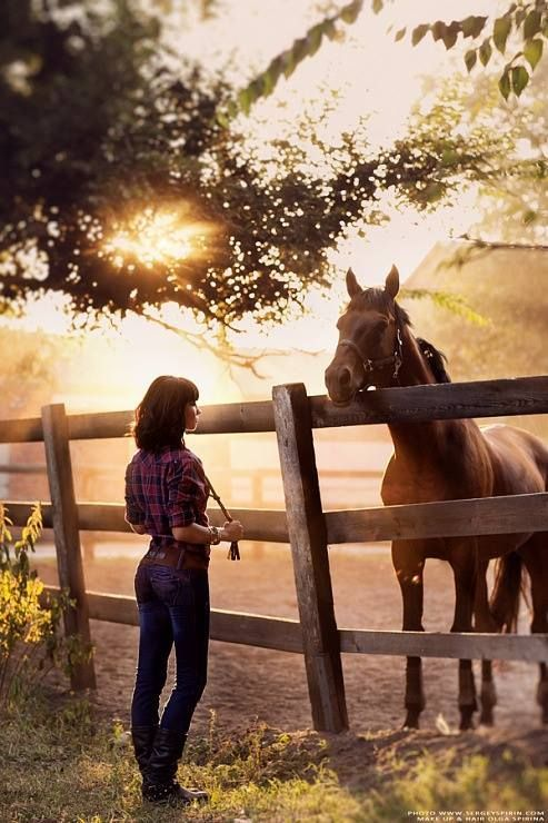 Country Living ~ Horses