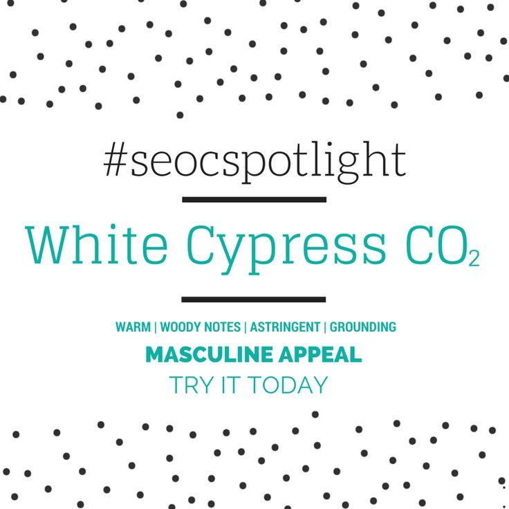 #SEOCSpotlight | White Cypress Australia | New Natural Ingredient | Online at www.seoc.com.au