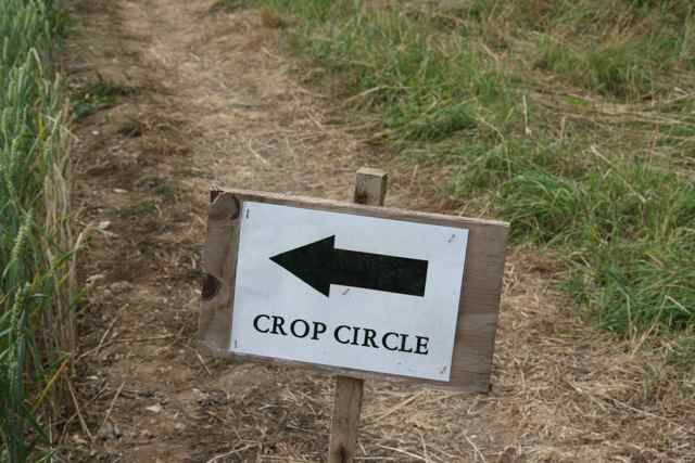 Crop Circles have fascinated me for many years. As a young girl, I would read articles and books on the unexplained and pour over the pictures...