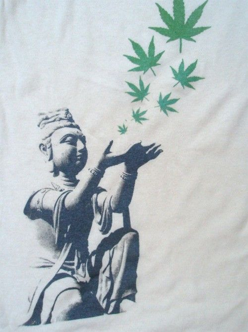 Title: Cannabis Not To Blame For Idiocy, Source: http://31.media.tumblr.com/tumblr_m1dsrdOZeN1qb0zaro1_500.jpg