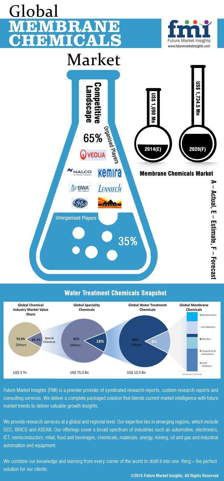 Membrane Chemicals Market Global Industry Industry Analysis Size And Forecast 2014 To 2020 Marketing Trends Specialty Chemicals Membrane