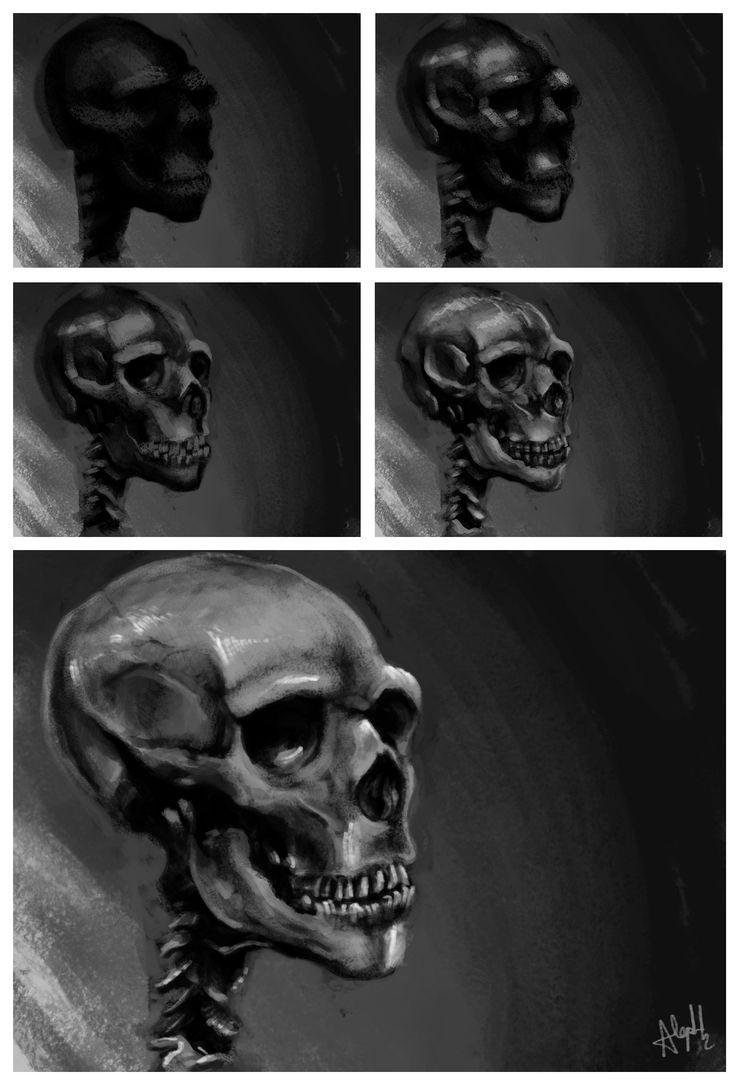 Skull study process.