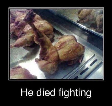 Grilled chicken died fighting...