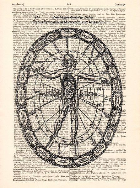 Illustraties - Anatomie lichaam illustratie kunst . - Een uniek product van…