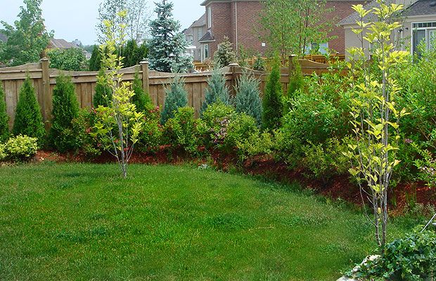 Landscaping Backyard Privacy : Outdoor privacy panels, Privacy landscaping and Evergreen on Pinterest