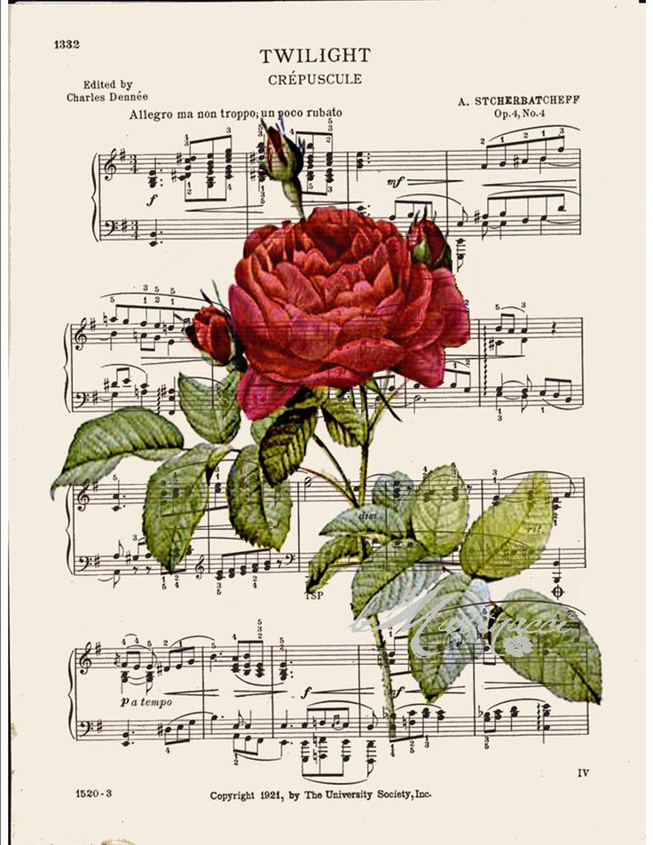 BOGO SALE French Red rose Dictionary art print printed on old antique music sheet.  No. 397. $9.75, via Etsy.