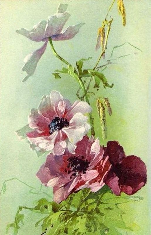 Alenquerensis: Catherine Klein (1861 - 1929) - The painter of roses / Catherine Klein painter of roses.