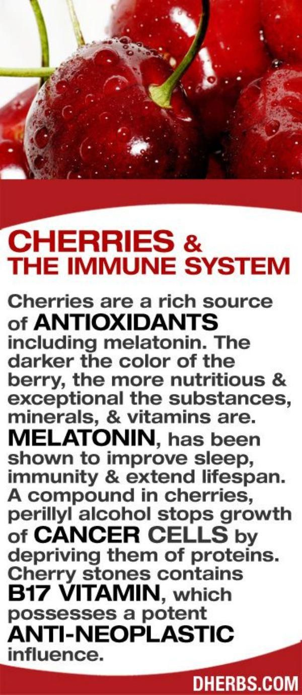 Health benefit of moringa leaves and moringa seeds nutriclue - Cherries And The Immune System