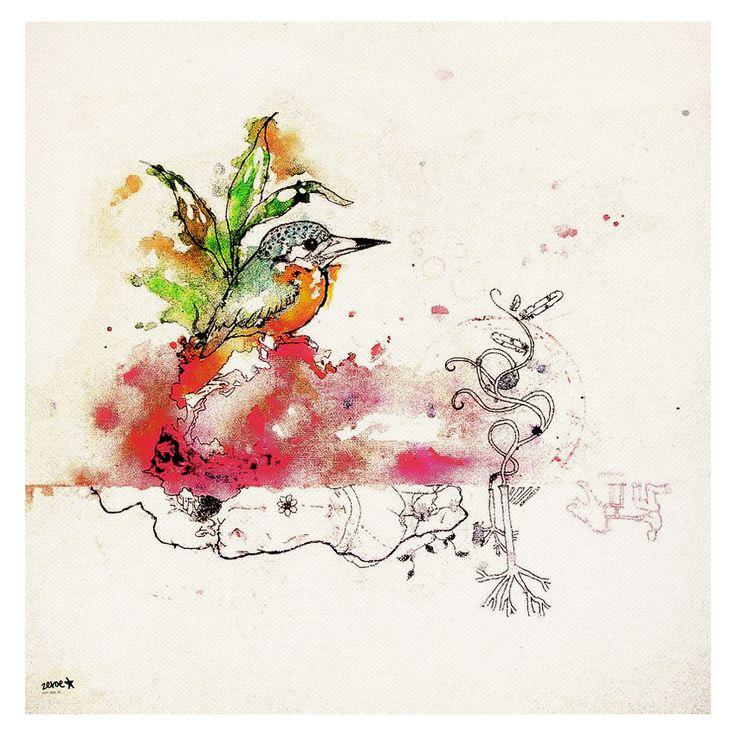 Hummingbird - 2009 | zeroe.at