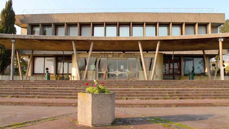 La Fièvre du savoir - université Rennes 1