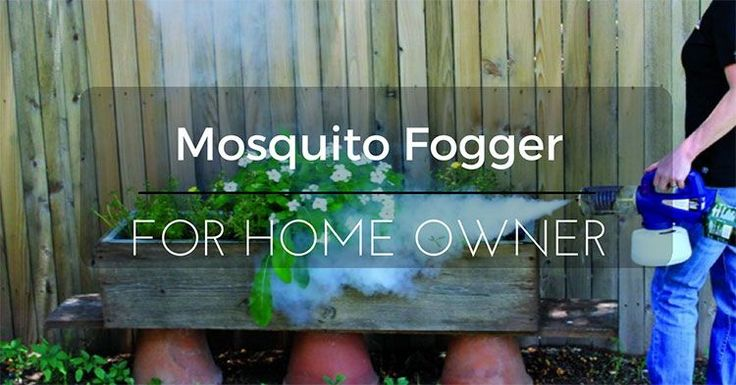 Looking For Best Mosquito Fogger Reviews? Read out honest review and comparision chart to have a right decision before purchasin the Mosquito Fogger.