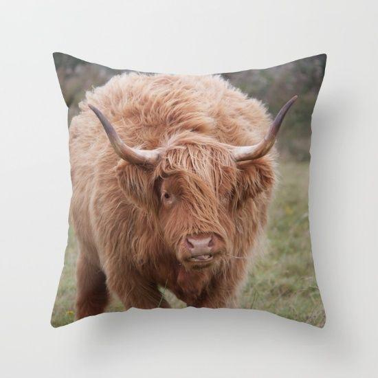 Pillow Society 6