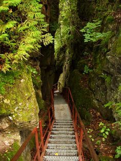 ONTARIO - Scenic caves, Collingwood, ON