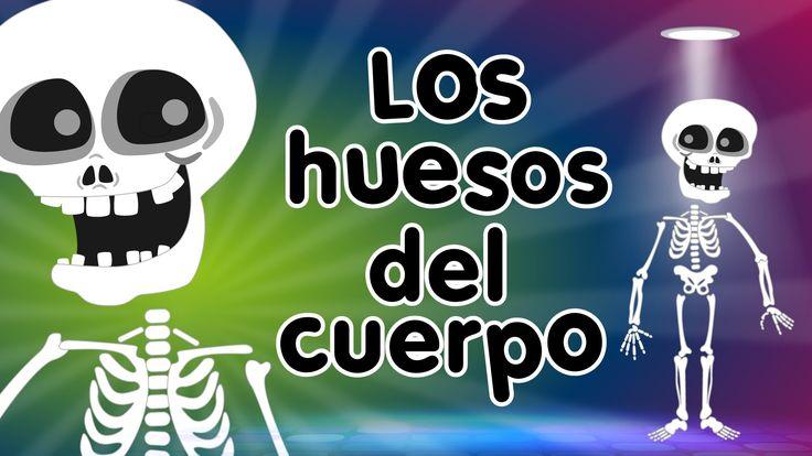 Los Huesos del Cuerpo - Canción para niños - Songs for Kids in spanish