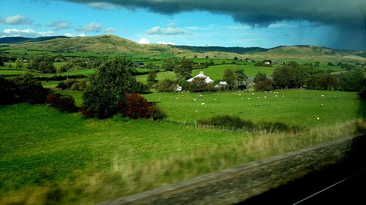 raylar, evler, kırlar, koyunlar, kuzular.. @ crosscountry treni, edinburgh'dan salisbury'e giderken / rails, cottages, grass, sheeps, lambs.. @ crosscountry trains, while going to salisbury from edinburgh... Edinburgh fotoğrafları